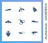 insects icon set and swallow...