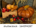 pumpkins and apples on crate on ... | Shutterstock . vector #164394287
