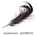 bluish ostrich feather on white ... | Shutterstock . vector #164398151