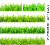 fresh green grass isolated on... | Shutterstock . vector #164416271
