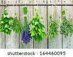 various fresh herbs hanging in... | Shutterstock . vector #164460095