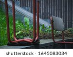 Small photo of The differences between the nature and the humans. The chair describes the humans that destroy what they have, and the green of the plants describe exactly how the nature can create