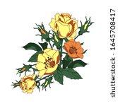 corner floral arrangement of... | Shutterstock .eps vector #1645708417
