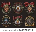 vintage military colorful... | Shutterstock .eps vector #1645775011