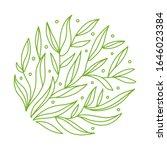 green tea  leaves in circle.... | Shutterstock .eps vector #1646023384