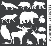 vector set of white forest animals silhouettes  - stock vector