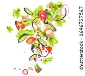 mix of fresh salad from... | Shutterstock .eps vector #1646737567