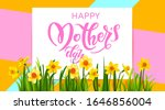 spring nature congratulations... | Shutterstock .eps vector #1646856004