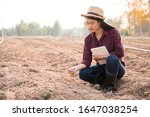 Asian young woman geologists are checking soil quality at the farmland.Agriculture researcher holding soil and tablet working on dry land farm.Agriculture engineer on work site. - stock photo