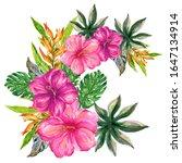 hand drawn tropical summer... | Shutterstock . vector #1647134914