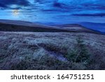 mountain landscape. valley with stones on the hillside. forest on the mountain under the moon light falls on a clearing at the top of the hill. - stock photo