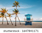 Small photo of Beautiful tropical Florida landscape with palm trees and blue lifeguard house. Typical American beach ocean scenic view with lifeguard tower and exotic plants. Summer seasonal wallpaper background.