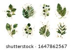 gold green floral tropical... | Shutterstock .eps vector #1647862567