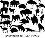 vector silhouettes of... | Shutterstock .eps vector #16479919