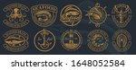 the biggest bundle of vintage... | Shutterstock .eps vector #1648052584