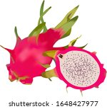draw a dragon fruit full and... | Shutterstock . vector #1648427977