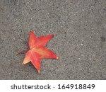 Single Autumnal Maple Leaf On...