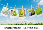 prints with natural concepts...   Shutterstock . vector #164955551