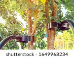Small photo of Black steel column supports and controls the branches and trunks of the tree to stand upright and beautiful in the park.