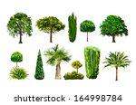 Realictic Tree Set