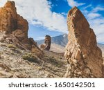 Toned Photo Of Big Rocks And...