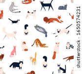 Colorful Different Cat Breeds...