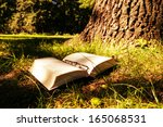 book and trunk in forest | Shutterstock . vector #165068531