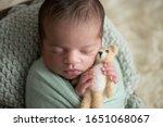 newborn baby boy  sleeping... | Shutterstock . vector #1651068067