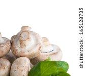 mushroom | Shutterstock . vector #165128735