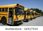 Long Row Of School Buses