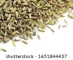 fennel's seed  foeniculum... | Shutterstock . vector #1651844437