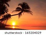 Stock photo sunset on tropical island 165204029