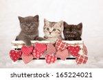 Valentine Theme Kittens...