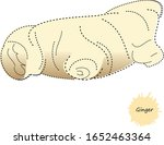 ginger root vector hand drawn... | Shutterstock .eps vector #1652463364