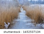 Frozen Drainage Ditch With...