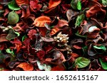 Potpourri Dried Plants And...
