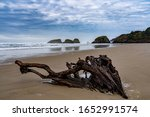 Driftwood And Sea Stack Rocks...