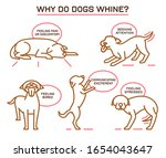 why do dogs whine. dog nuisance ... | Shutterstock .eps vector #1654043647