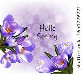 Spring Hello  Early Crocus...