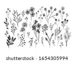 big set of hand drawn of floral ... | Shutterstock .eps vector #1654305994
