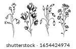a set of monochrome wildflowers.... | Shutterstock .eps vector #1654424974