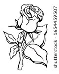 blossoming rose symbol  sketch  ... | Shutterstock .eps vector #1654459507