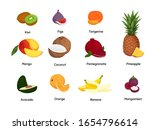 tropical fruits set. vector... | Shutterstock .eps vector #1654796614