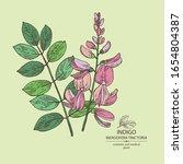 background indigofera tinctoria ...   Shutterstock .eps vector #1654804387