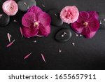 top view luxury spa with orchid ... | Shutterstock . vector #1655657911