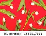 white beautiful spring tulips... | Shutterstock . vector #1656617911