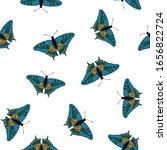 exotic butterflies delicate... | Shutterstock .eps vector #1656822724