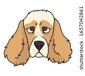 cute cartoon cocker spaniel dog ...   Shutterstock .eps vector #1657042861