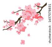 cherry tree branches  vector... | Shutterstock .eps vector #1657078831