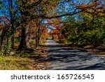 Beautiful Fall Foliage A Small...